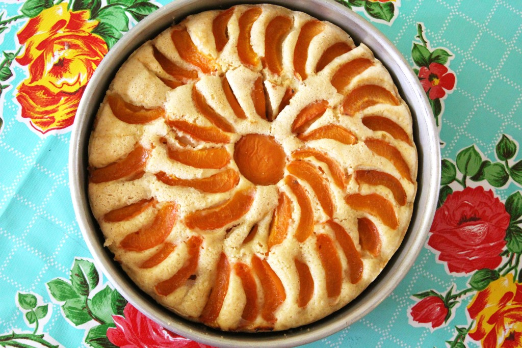 Apricot Almond Cake (gluten-free + vegan) - Julie's Original